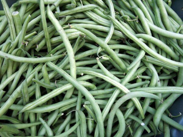 beans, garden, market