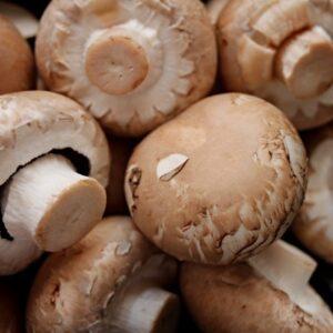 mushrooms, brown, heads