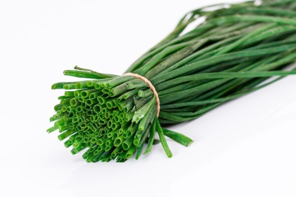 spring onion, salad onion, flavoring