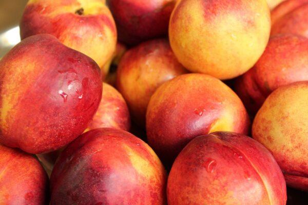 nectarines, fruit, fresh