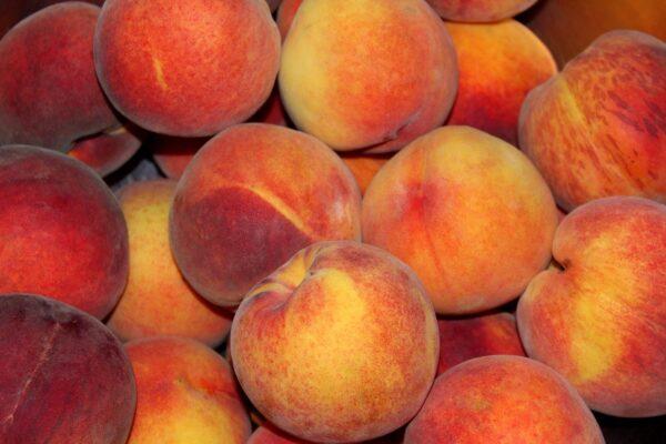 peaches, fruit, mature