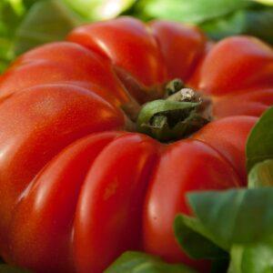 tomato, vegetable, beef heart