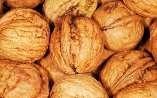 walnuts, nuts, food